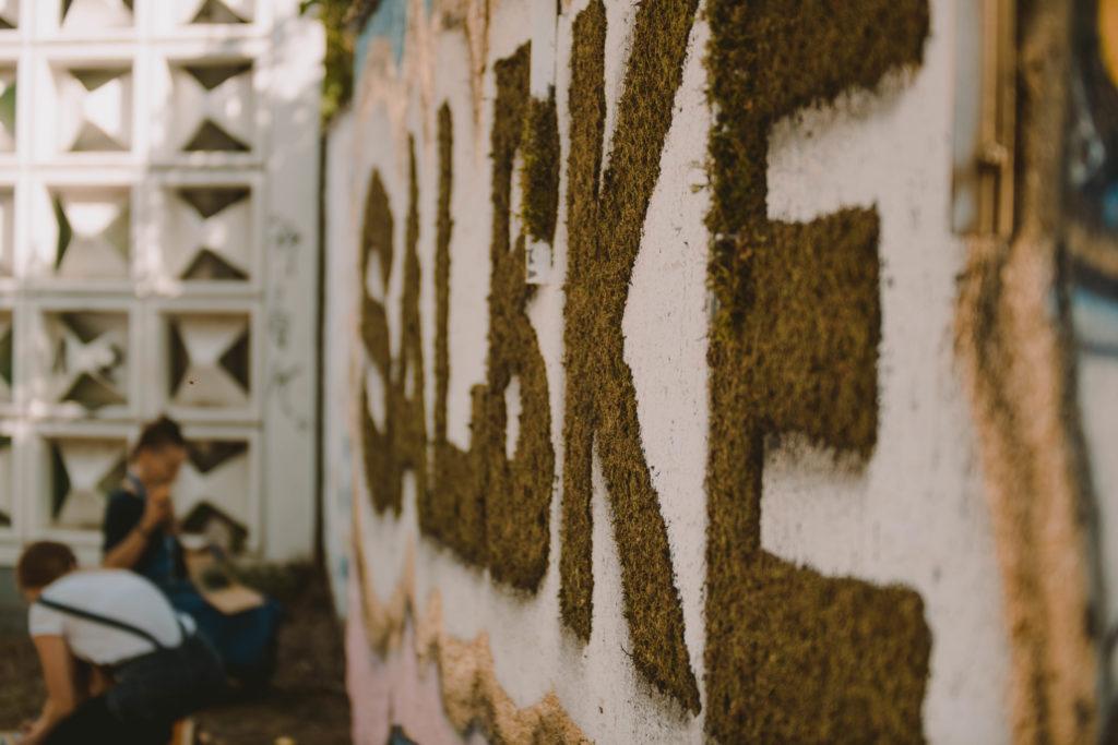 """Der Schriftzug """"Salbke"""" wurde mit Moosgraffiti an eine Mauer neben dem Salbker Lesezeichen angebracht."""